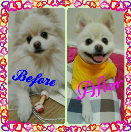 Before or After!뭐가 더 예쁘나요??